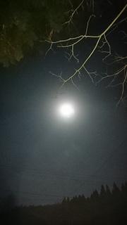 獅子座満月.jpg